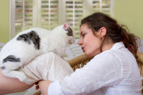 Kediler ve İnsanlar