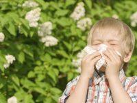 bahar alerjisi