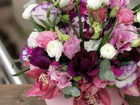 Sevgiliye Canlı Çiçek Hediye Modelleri